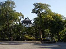 岡崎市の五万石藤まつり