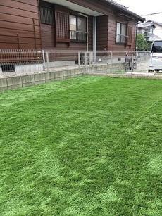 専用庭への人工芝DIY