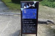 1月9日は稲沢の国分寺福だるま、国分寺マルシェも同時開催!