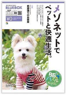 ブルーボックス フリーペーパー 8月号 好評配布中♡