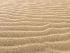 10月13日から。砂アートの祭典!「サンドフェスタ2018」