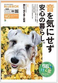 ブルーボックス情報誌 10月号 好評配布中♡