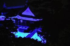 1月14日まで!岡崎城がイルミネーションで彩られる「岡崎イエヤスコウイルミネーション」