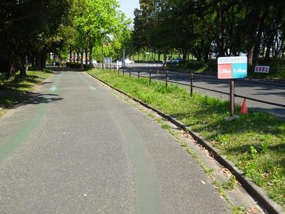 サイクリングコース.JPG
