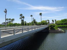 名古屋市港区にある荒子川公園は自然がいっぱい