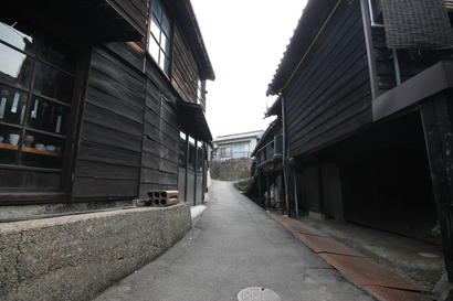 散歩道2.JPG