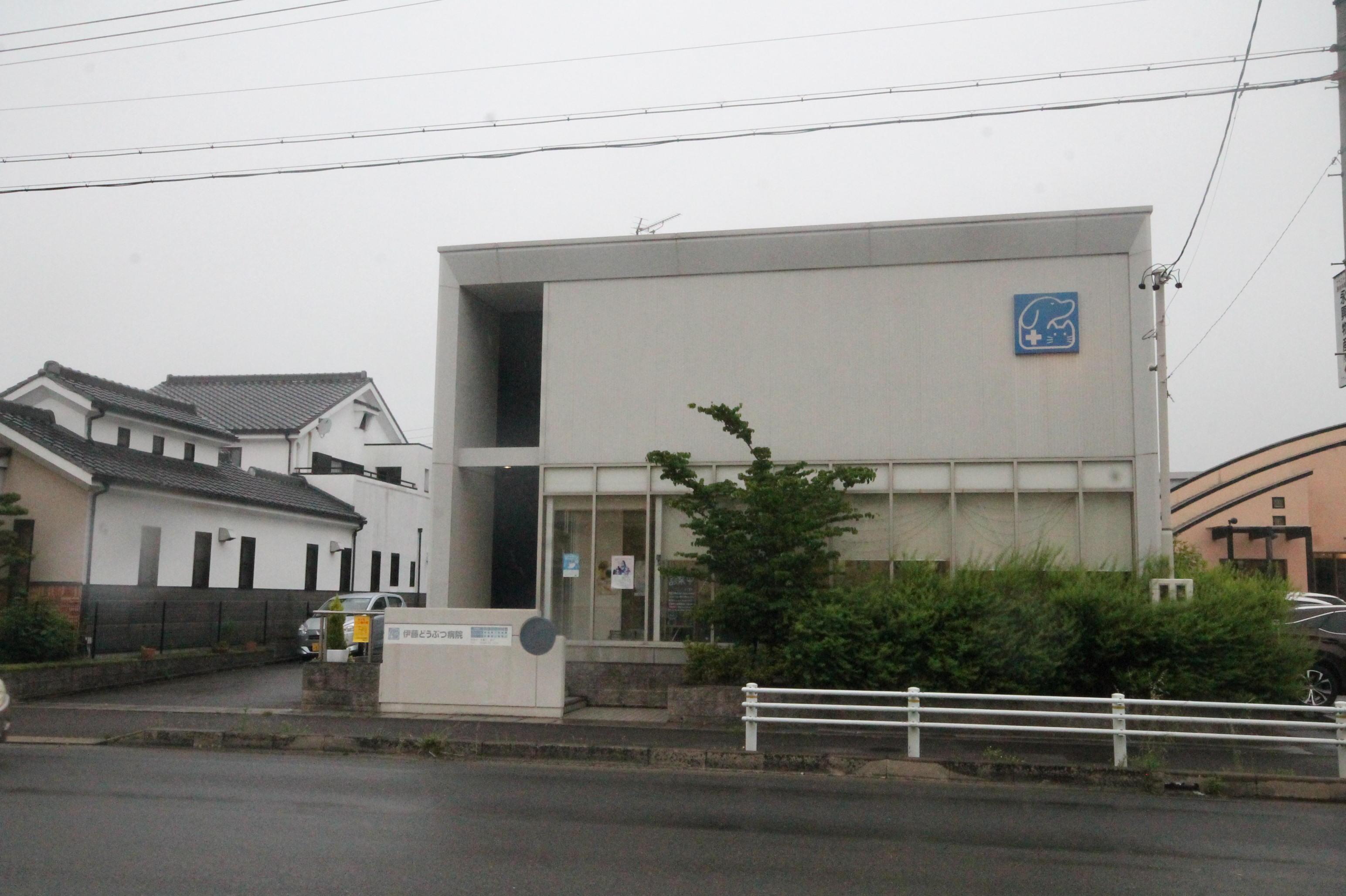 伊藤どうぶつ病院の写真
