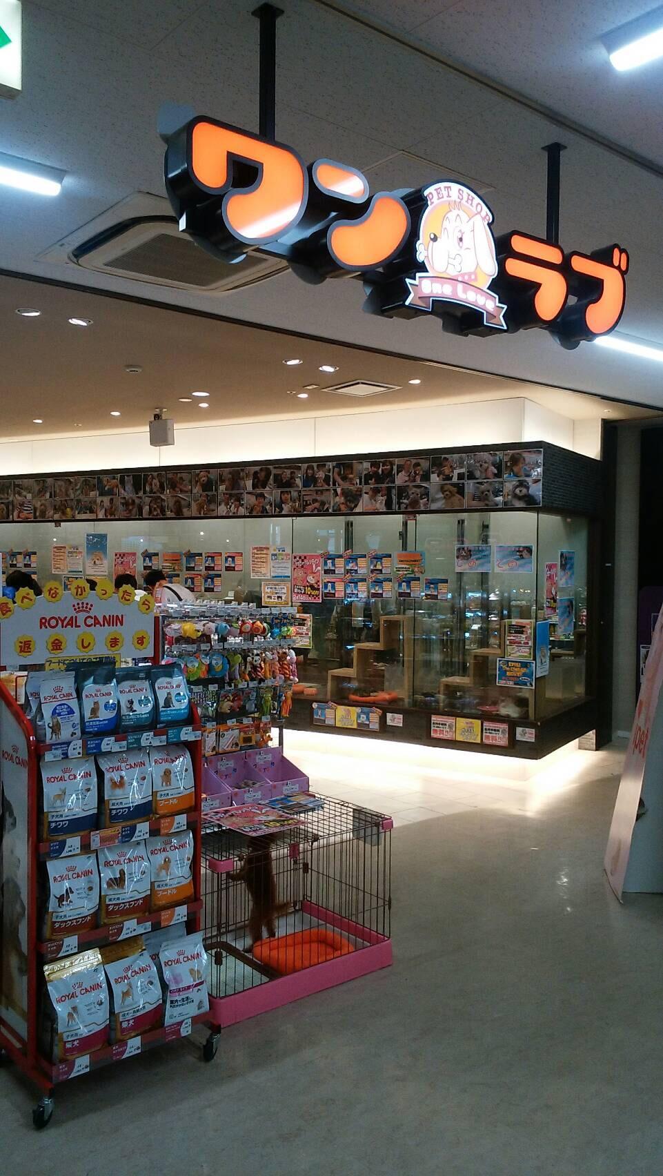 ワンラブ(ONELOVE)MEGA ドン・キホーテ春日井店の写真